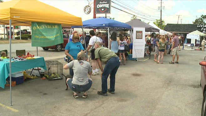 Sweeney Chevrolet hosted a pet adoption event in Canfield, Ohio._48920