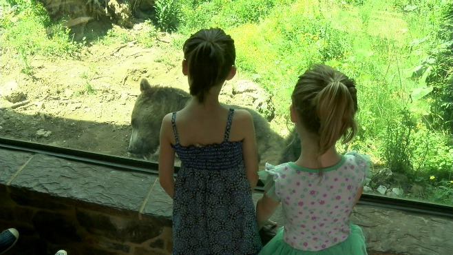 Akron Zoo_80781
