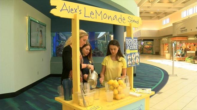 alexs lemonade stand niles_82229