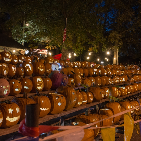 Boardman Park pumpkin display