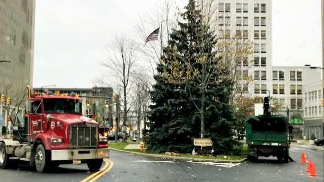 Youngstown Christmas tree_458103