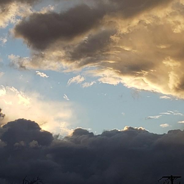 Cortland weather, January 8