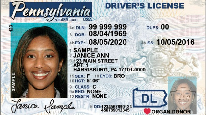 Adult Driver License Image_372653