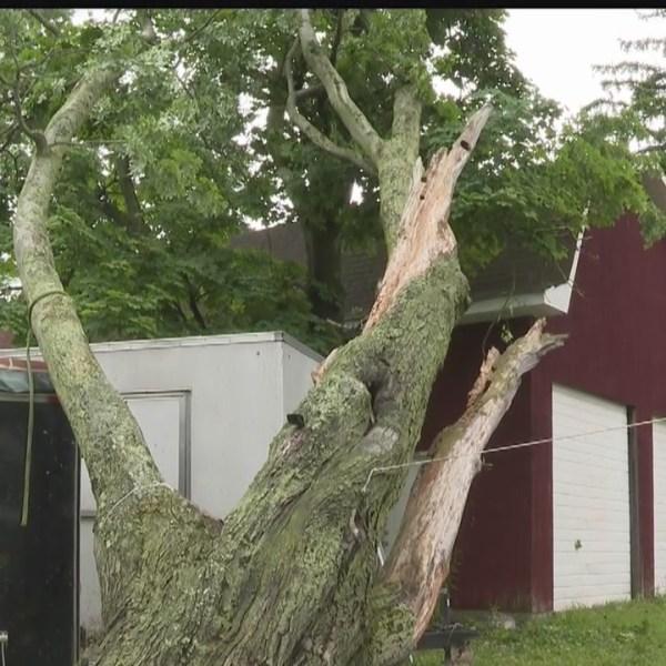 Wood Street in Brookfield tornado damage
