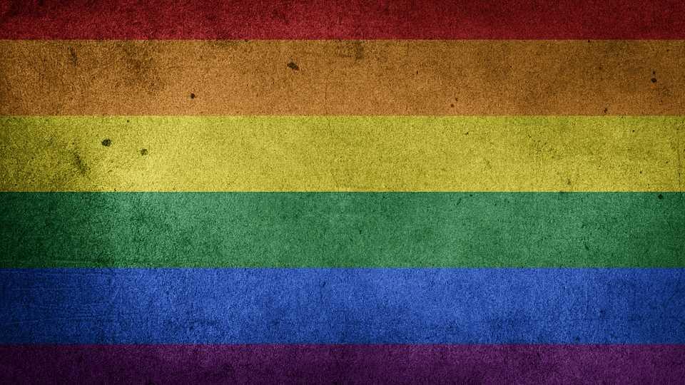 A photo of the LGBTQ Pride flag.