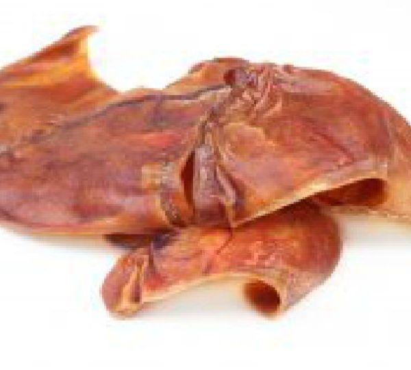 Pig ear dog treats salmonella outbreak
