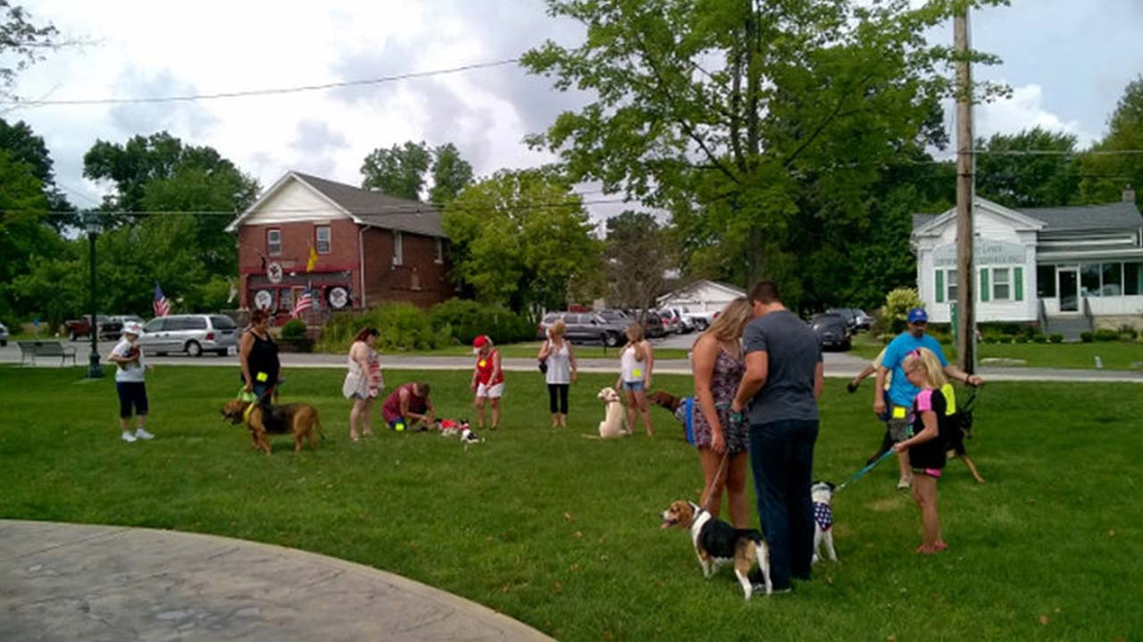 People and their pets enjoying a previous Summer Fest on the Green in Brookfield, Ohio.