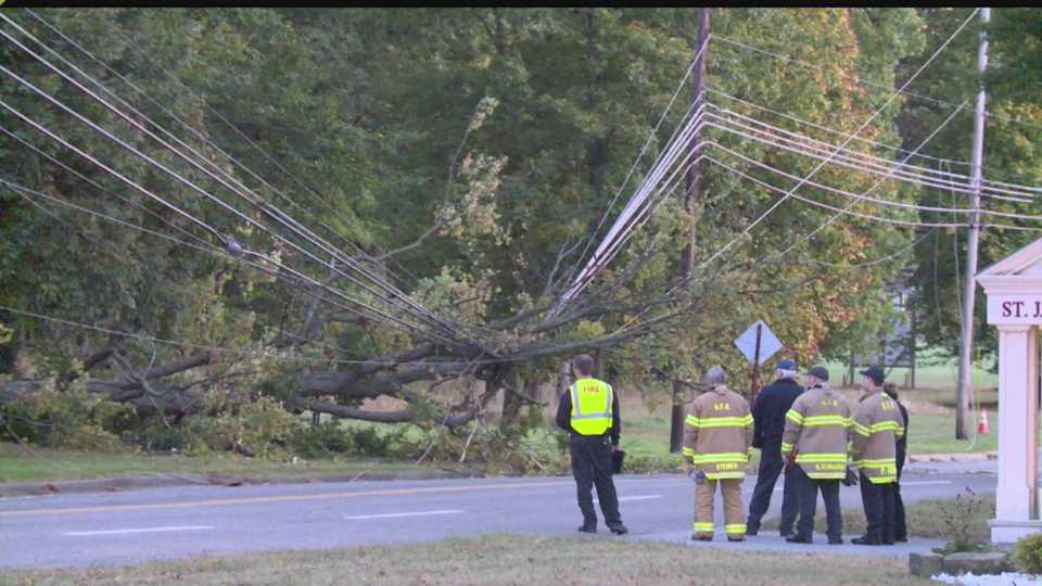 Tree hits Boardman power lines at Glenwood and Southwoods
