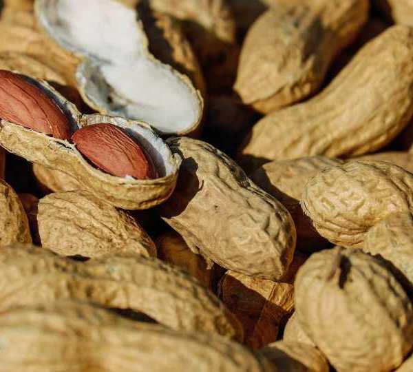 Peanuts, nut allergy