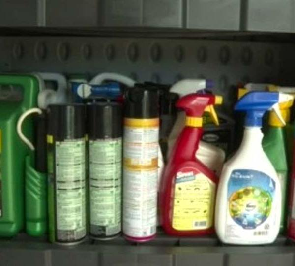 Len Rome's Local Health: Have you sprayed for bugs?