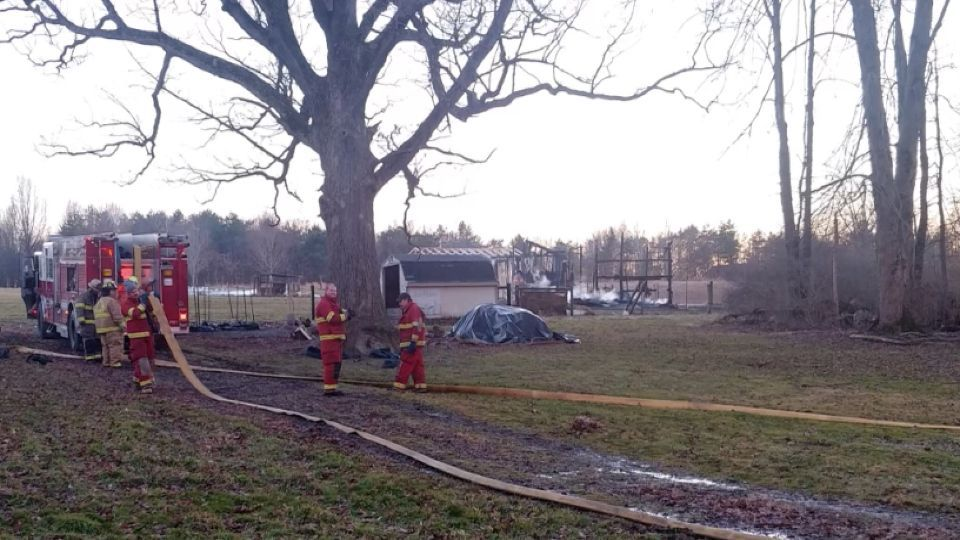 Shenango Twp. chicken coop fire