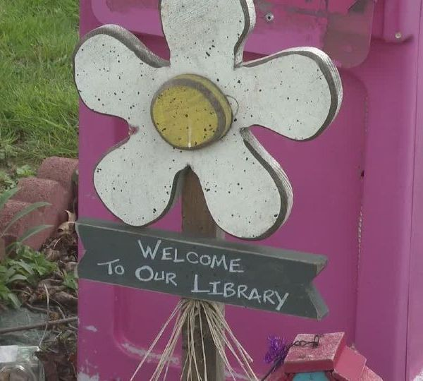 This week's Hometown Hero is a Mom from Boardman who wants to empower young minds through reading.